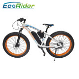 Fashion Bicycle Electric Bike Electric Fat Bike
