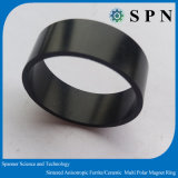 NdFeB Sintered Multipole Magnet Ring for BLDC Motor