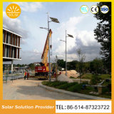 Hot Sale 8m Pole 60W Hybrid Solar LED Light with Wind Power