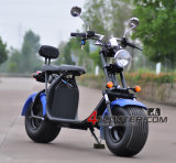 60V20A 72V20A Electric Scooter Motorcycle EEC Approved