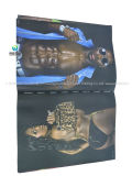 Custom A4 Printing Catalog Brochure for Keep Fit