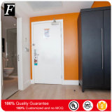 Paint Grade UL 20 Min Fire Rated Wood Door