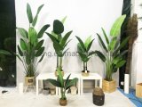 Simulation Traveler Banana Tree Potted Crafts Decorations Realistic Artificial Plants