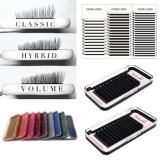 Premium Thickness Tray Eyelash Extensions with Private Labe