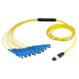 MTP/MPO Fiber Trunk/Fanout/Breakout Cable/Patch Cord/Patch Cable