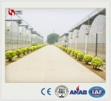 High Quality Plastic Film Greenhouse for Ecological Green Agriculture, Transparent Rains Proof Plastic Film, 200 Micron Poly Film