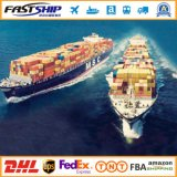 Dedicated 20gp FCL Container Port Sea Freigt From China to Shipping LCL Cargo Freight Price Colombia