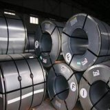 Cold Rolled Carbon Steel Coil (csp-001)