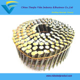 "Coil Nails (Diameter: 0.083""-0.131"", Length: 1.38""-3.54"")"