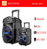 Professional Portable (Trolley) Speaker with Battery Bluetooth (BY8)