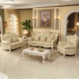 Home Leather Sofa for Living Room Furniture (528)