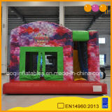 Birthday Party Inflatable Bouncy Bed (AQ758-6)