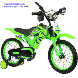 Newest Mini Dirt Bike for Kids