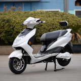 800W Electric Motorbike with Front Disc Brake