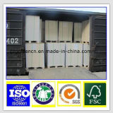 Competitive Price Eco-Friendly Best Quality Ivory Fbb Paper Board