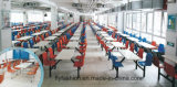 2018 Hot Sale School Furniture, High Quality School Dining Table and Chair with Competitive Price (DT-01)
