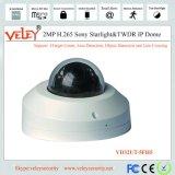 CCTV Camera Supplier Video Infrared Camera PTZ IP Surveillance Installation
