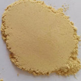 Pure Ginger Powder 2019 Crop Competitive Price Ginger