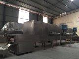 Kwsg Tunnel Type Microwave Sterilizing Dryer/ Food Vegetable Drying Machine