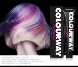 New Arrival Wholesale Professional Permanent Hair Color