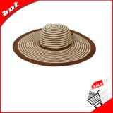 Straw Hat Floppy Hat Big Brim Hat Woman Hat