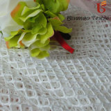 Elastic Dyed Polyester Warp Knitting Mesh Fabric for Garment