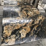 Black Granite Titanium/ Black and Gold Slabs for Counter Tops and Leather Wall