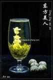Blooming Green Tea (Flower Tea, Art Tea) EU Standard