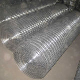 Welded Wire Mesh Roll and PVC Coated Rabbit Cage Wire