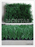 Artificial Grass, Sports Grass, Football Grass, Socer Grass (DSJN50)