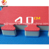 Fast Delivery Cheap High Density EVA Tatami Taekwondo Mat Puzzle Mat for Sale