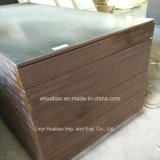 Waterproof Film Faced Plywood for Concrete Shuttering