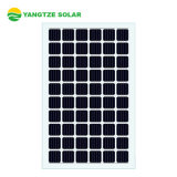 Yangtze Ce Certificated BIPV Solar Panel 360W 350W 10% Glass Transmittance