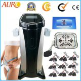 Standing Infrared Electric Muscle Stimulator for Body Building Beauty Machine