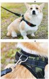 Custom Cheap Hardware Metal Alloy Dog Leash Snap Hook for Dog Pet