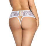 New Designs Factory Direct Sale Lace Ladies Underwear
