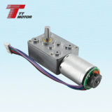 Automotive tansmission 6V electric micro worm gear motor