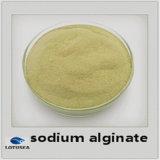 Solid Phase High Quality Sodium Alginate