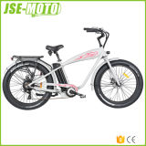 48V 500W E Bikes Mountain Electric Bicycles Ebikes Made in China