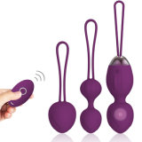 Y. Love Adult Toy Electric Vagina Exercise Kegel Ball Kit Ben Wa Ball Wholesale