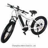 Mountain Type 48V 350W Electric Bicycle for Men