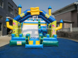Funny Inflatable Castle Slide with Good Quality