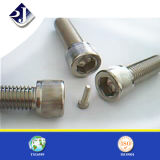 Stainless Steel A2/A4 Mount Screw