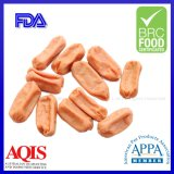 Chicken Meat Sausage Healthy Pet Food for Pet Treats