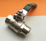 Female and Male Ball Valve Control Valve