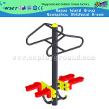 Outdoor Body Building Equipment Outdoor Double Twister (HA-12102)