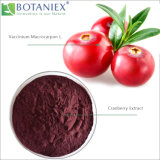 Best Selling Herbal Natural Quality Cranberry Extract, Vaccinium Macrocarpon L. Extract, 5% Proantho Cyanidins Extract