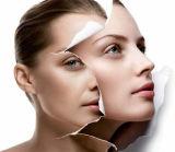99% Anti-Aging &Whitening Skin Cosmetics API Powders CAS 84380-01-8 Alpha-Arbutin