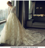 V-Neck Bridal Gowns Champagne Puffy Lace Wedding Dresses Z8016