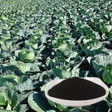 Cheap Seaweed Extract Fertilizer Direct From Factory